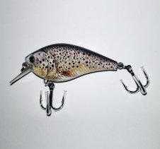 10g Trout Hard Body Lure