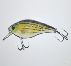 10 gram Hard Body Lure